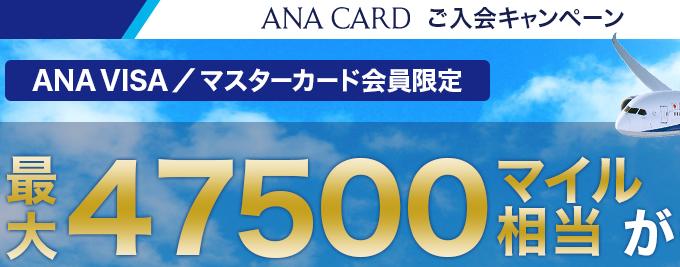 ana visa キャンペーン